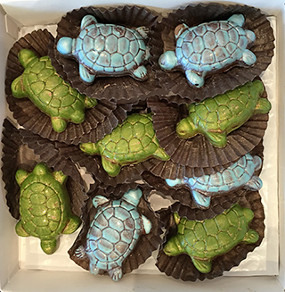 ferawyn Turtles