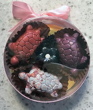 Fera'wyn's Turtles